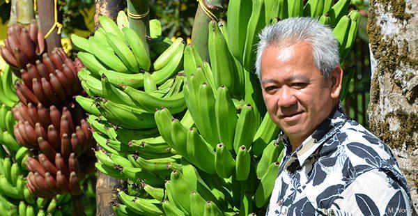Maurice Wong
